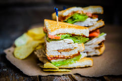 Club sandwich on rustic wooden background Royalty Free Stock Images