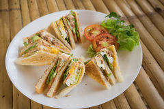 Club sandwich in white dish Royalty Free Stock Photography