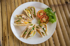 Club sandwich in white dish Royalty Free Stock Images
