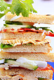 Club Sandwiche Stockbild