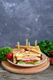 Club-sandwiches with crispy toast, sausage, cheese, tomato, greens. Traditional American snack Stock Image