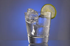 Club Soda with ice and a slice Royalty Free Stock Photo