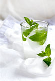 Club soda with mint Stock Photo