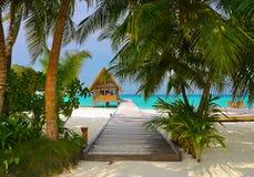 Club y café del salto en una isla tropical imágenes de archivo libres de regalías