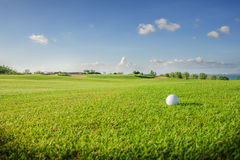 Clube de golfe Campo e bola verdes na grama Imagem de Stock Royalty Free