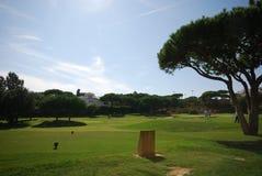 Clube do golfe foto de stock