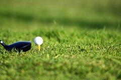 Clube e bola de golfe Fotografia de Stock Royalty Free