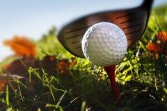 Clube e esfera de golfe na grama Foto de Stock Royalty Free