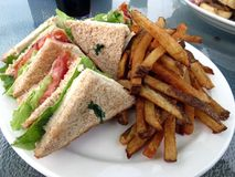 Clubhouse and Fries. Clubhouse sandwich on whole wheat, served with French fries royalty free stock photo