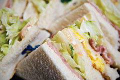 Clubhouse Sandwich. Close Up of a Clubhouse Sandwich Royalty Free Stock Photos