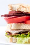 Clubhouse sandwich with crispy fries Royalty Free Stock Photography