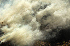 Clubs acrid smoke of burning hay  background Stock Image
