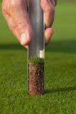 Clubs des professionellen Golfs in einem ledernen Gepäck bei Sonnenuntergang Stockbild