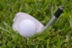 Clubs des professionellen Golfs in einem ledernen Gepäck bei Sonnenuntergang Lizenzfreie Stockfotografie
