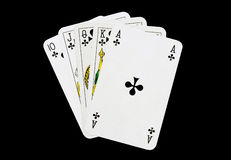 Clubs Royal flush. The Royal flush in poker game Stock Photography