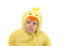 Cluck! Stock Image
