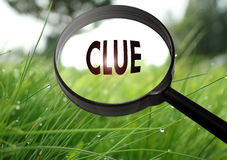 Clue Royalty Free Stock Photo