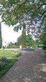 Cluj, jardín botánico foto de archivo libre de regalías