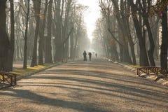 Cluj Napoca centraal park royalty-vrije stock fotografie