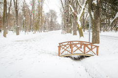 Cluj Napoca Central Park during winter Royalty Free Stock Image