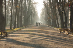 Cluj Napoca central park. Winter light and bridges in central park Cluj Napoca. Couple walking with pushchair Royalty Free Stock Photography