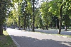 Cluj-Napoca RO, 24 September: Central Park Hoofdsteeg in cluj-Napoca van het gebied van Transsylvanië in Roemenië Stock Afbeeldingen