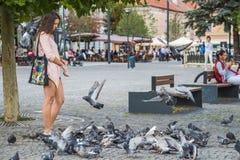 CLUJ-NAPOCA, ROMÊNIA - 29 DE AGOSTO DE 2017: A jovem mulher não identificada alimenta um rebanho dos pombos no quadrado de Unirii fotos de stock royalty free