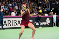 Woman tennis player hitting the ball. CLUJ NAPOCA, ROMANIA - FEBRUARY 10, 2018: Romanian tennis player Sorana Cirstea playing tennis against Carol Zhao during a Stock Photo