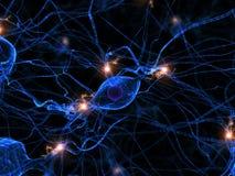 Célula nerviosa activa Fotografía de archivo libre de regalías