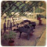 Clumber Parco-ha murato il conservatorio dell'orto domestico Immagine Stock Libera da Diritti