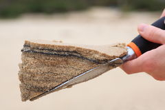 Sand layers on trowel Royalty Free Stock Image