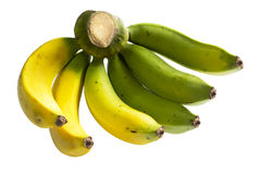 Cluster of Banana. With half green and hafl mature Stock Photography