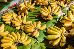 Cluster Banana on sales in the market Stock Image