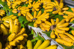 Cluster Banana on sales in the market Royalty Free Stock Image