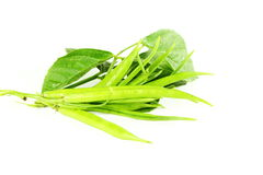Cluster bean or guar been indian vegetable in white background Royalty Free Stock Photos