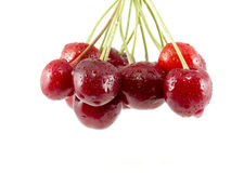 Cluster of berries of sweet cherry Royalty Free Stock Images