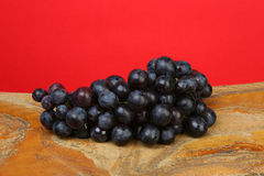 Cluster black grape. On a red background Stock Images