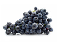 Cluster of blue grape isolated Stock Image