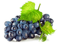 Cluster blue grapes with green leaf. On white background Stock Photos
