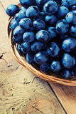 Cluster of Blue Grapes on Old Wooden Background. Royalty Free Stock Photography