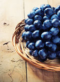 Cluster of Blue Grapes on Old Wooden Background. Stock Photo