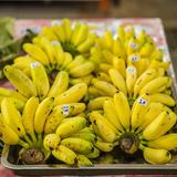 Cluster of Dainty bananas or Pisang Mas. Bananas for retail sale in Thailand fresh food market Royalty Free Stock Photography