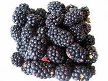 Cluster of fresh blackberries. A cluster of fresh picked blackberries isolated on white Stock Image