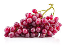 Cluster fresh grapes ripe fruit Stock Photography