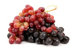 Cluster of grapes Stock Images