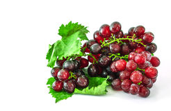 A cluster of grapes Royalty Free Stock Images