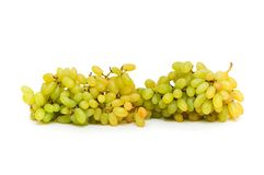Cluster of grapes isolated Stock Image
