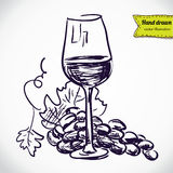 Cluster of grapes, wine glass. Vector sketchy illustration stock illustration