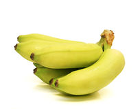 Cluster of Green Baby Bananas Stock Photography