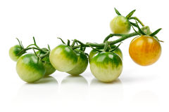 Cluster green cherry tomato at branch. Isolated Stock Photo